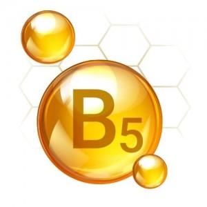 Pro-vitamin B5 SEAMS Hand Cream